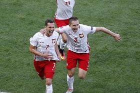 POLES TOGETHER: Poland's Arkadiusz Milik (far left) celebrating his goal with Artur Jedrzejczyk (right) and Bartosz Kapustka. The defeat was hard to take for Northern Ireland's Kyle Lafferty.