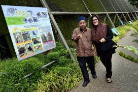 SWEET: (From left) Mr Abdul Wahid and Madam Latifah plan to celebrate their 30th wedding anniversary at the Bird Park this November.