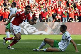 RELIEF: Wales forward Hal Robson-Kanu (left) celebrating after an own goal by Northern Ireland defender Gareth McAuley (on ground).