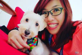 PET LOVER: Miss Diane Yue Hui Hui has been a pet-sitter since early last year.
