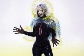 GOOD MUSIC: The songs from Bjork (above) and Lana Del Rey are good enough to give the listener a skin orgasm.