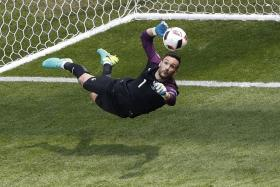 RESPECT: Hugo Lloris (above) won't be underestimating minnows Iceland, although he doesn't see his side losing.