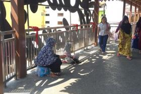 SAD: This woman and her child turned up at the overhead bridge around noon.