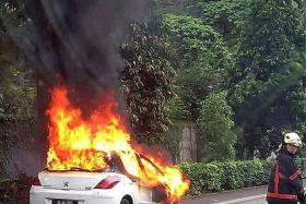 This Malaysian-registered white Peugeot burst into flames (above) along the Ayer Rajah Expressway in the direction of the Marine Coastal Expressway at about 10am yesterday.