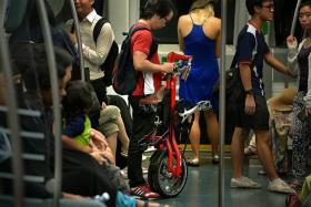 RESTRICTED: Currently, foldable bikes are allowed on public transport only during off-peak hours.