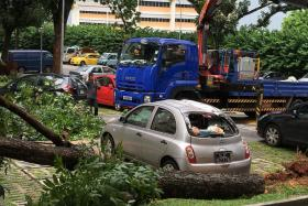 CRUSHED: The front and rear windscreens and the roof of Madam Leong Shock Ping's Nissan March were badly damaged.