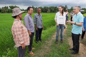 GREEN EFFORTS: Mr Thirawit Leetavorn (right) and travel presenter Denise Keller (in white) with rice farmers in Thailand.