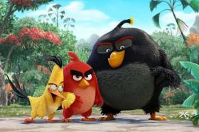 HIT: The Angry Birds Movie is one of the many films with animals to dominate the box office in the past few months.