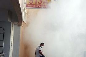 FOGGING: A pest control technician from Empire Cleaning & Pest Control fumigating the Bedok North Avenue area.