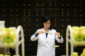BENEFITS: (Above) Dr Lim Min Yee says cordyceps have antiinflammatory and anti-tumour effects.