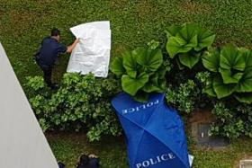 DEAD: The 29-year-old woman and her three-monthold daughter were found lying motionless at the foot of an HDB block at Fajar Road yesterday.