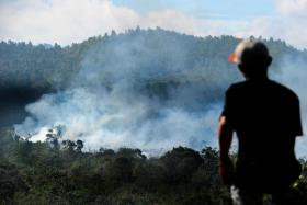 This year, there were only 14,490 hot spots recorded in Indonesia this year, compared to 78,164 last year.