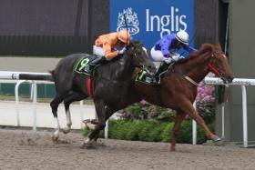 Sir Isaac (No. 9) in action during a race at Kranji on 26 June 2016.