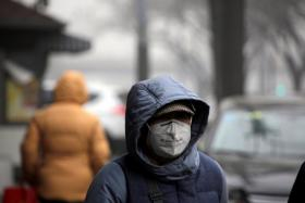 A woman wearing a mask walks along a street during smog on a polluted day in Beijing, China, January 5, 2017.
