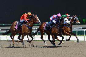 Terms Of Reference (centre with jockey Barend Vorster astride) getting the win for trainer Ricardo Le Grange in Race 5 on Sunday.