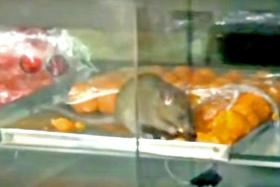 Rats! Restaurant in viral video was wrongly identified