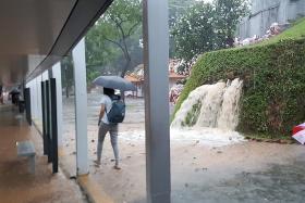 Heavy rain sparks crashes, floods