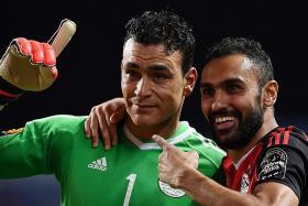 Veteran goalkeeper El Hadary the hero for Egypt
