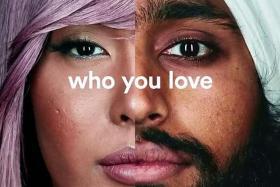 Super Bowl advertisers promote tolerance, multiculturalism