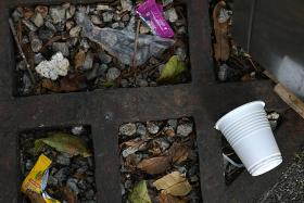 Littering fines hit seven-year high last year