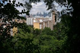 Singapore the No. 1 tree city
