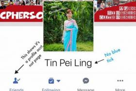 Scammers impersonate MPs in fake Facebook scam