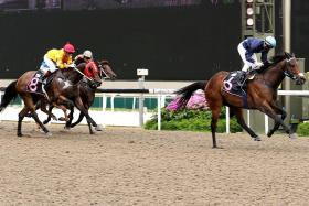 Cavallo storms to easy victory