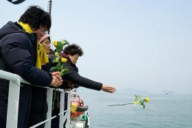 Remains in sunken Korean ferry 'animal bones'