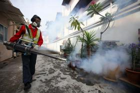 New Zika cluster in Hougang