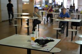 Your views: Do more to keep pigeons out of food centres