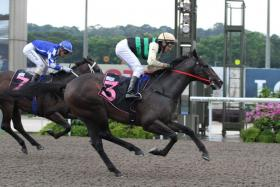 Charger, ridden by jockey Michael Rodd, winning the first leg of the Singapore Golden Horseshoe Series, in Race 5 at Kranji on April 14.