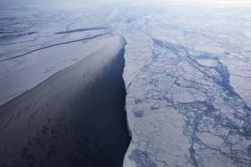 8 in 10 consider climate change a catastrophic risk: Survey