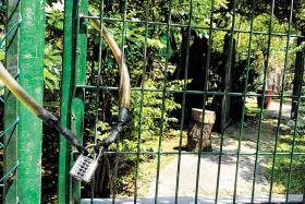 locked community gardens