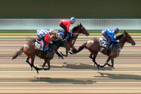 Golden States (No. 1) finishing second to Kiss Your Song in a barrier trial on May 23.