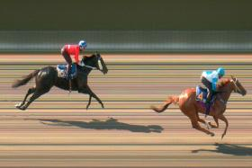 Nova Strike beating Cadet and Glamorous in the opening trial at Kranji yesterday.