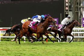 Boss lifts Alibi to sensational victory