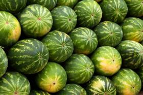 Man tries to woo ex-girlfriend with 99 watermelons