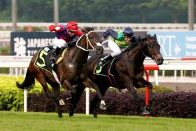 Copacabana (right) beating Justice Light on March 10.
