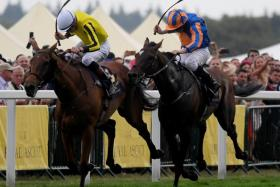 Big Orange (jockey in yellow jersey) denies Order Of St George of a Gold Cup double on Thursday.