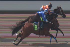 Ancient Warrior beats Storm Troops (No. 8) in Trial 3 yesterday.