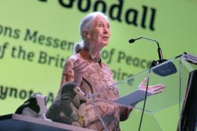 Dr Jane Goodall speaking at an event to mark the 10th anniversary of the environmental group she founded, the Jane Goodall Institute (Singapore).