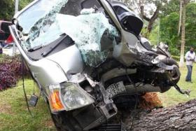 A van which belongs to ABT Medical Products, hit a tree and uprooted it at Upper Thomson Road at the exit of Seletar Expressway on 20 July 2015.