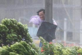 Typhoon Hato leaves 4 dead in Hong Kong, Macau