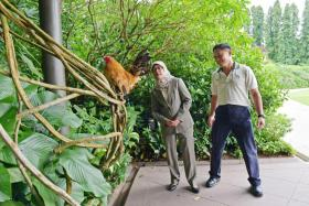 President Halimah Yacob (left) and NParks Group Director (Fort Canning & Istana) Mr Wong Tuan Wah on a tour of the Istana.