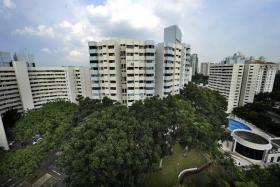 The 660-unit Pine Grove near Ulu Pandan Road in the Holland Road district.