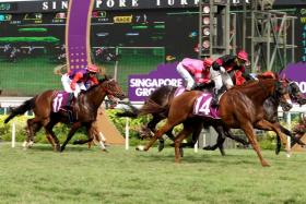 Secret Win (No. 14) charges home to win the $150,000 Group 3 El Dorado Classic over 2,200m in Race 7 at Kranji yesterday.
