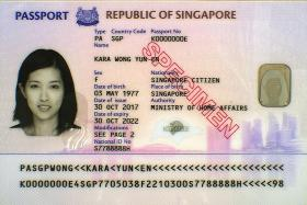 Additional security features for new biometric passport