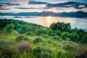 The Highland Titles nature reserve of Glencoe Wood.