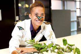 Studying insects gives him a buzz