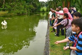 Series allows more onto Istana grounds